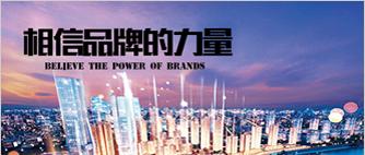 重庆品牌形象展示网站建设