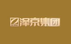 重庆泽京投资发展有限公司