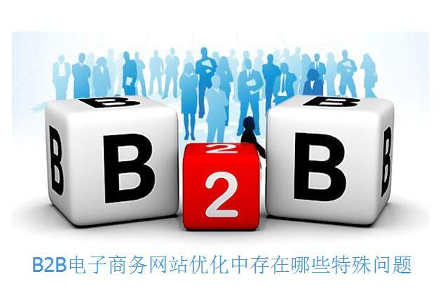 B2B电子商务网站优化中存在哪些特殊问题
