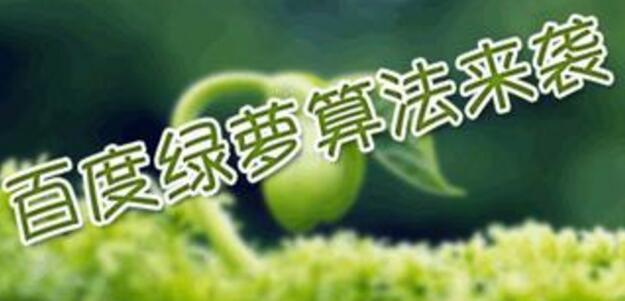 重庆网站建设百度算法