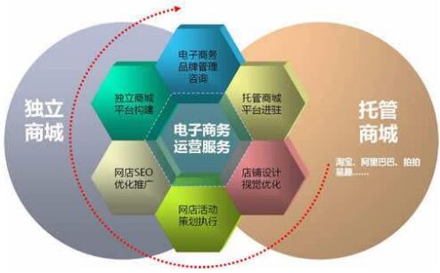 重庆电子商务网站建设
