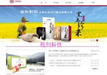 重庆食品企业网站建设方案