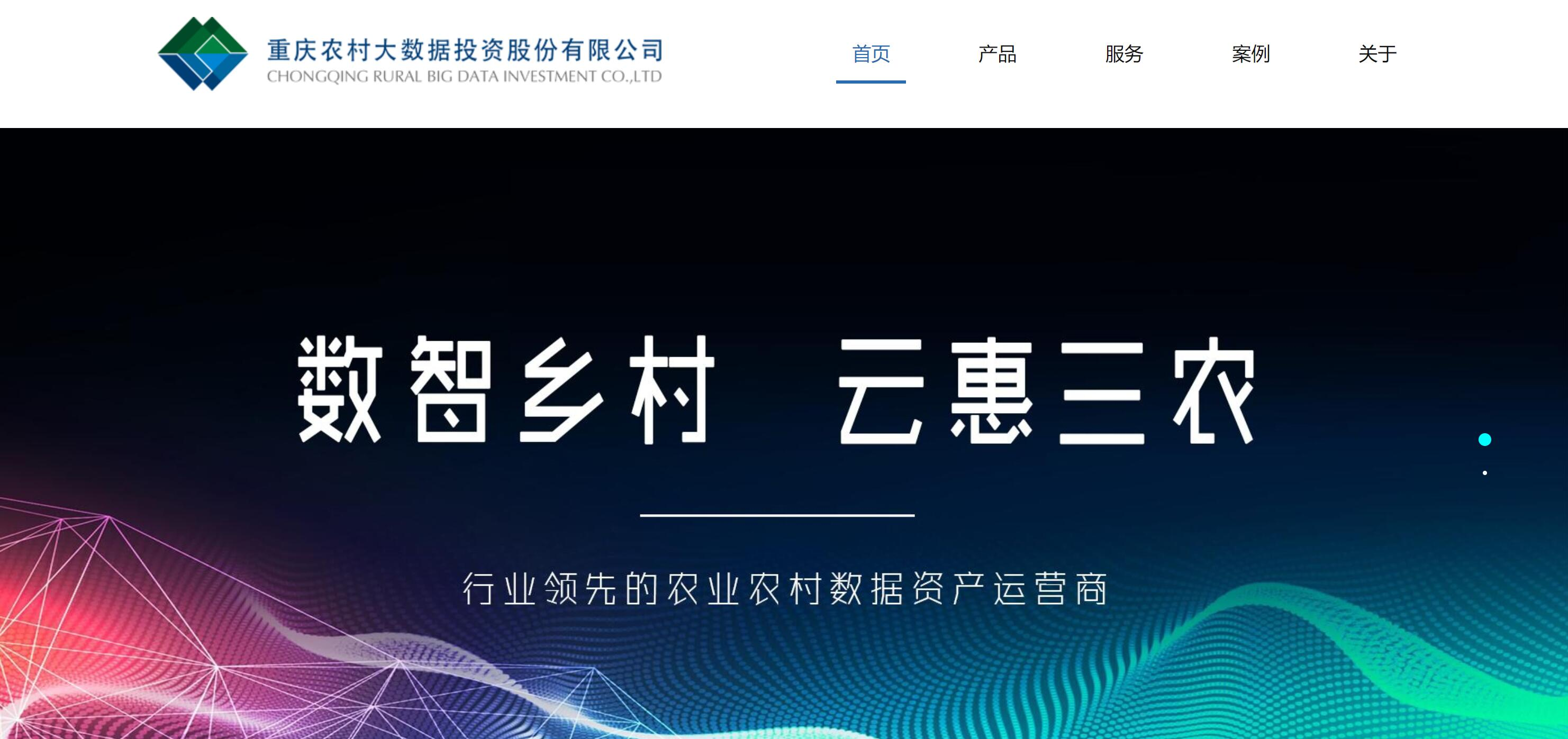 重庆农村大数据官网建设成果分享